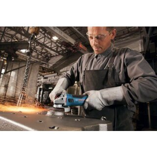 Bosch Winkelschleifer GWS 17-125 CIE Professional 1700W 125mm